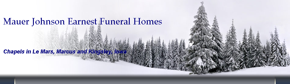 Mauer Johnson Earnest Funeral Homes